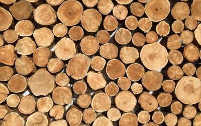 Правила перевозки пиломатериалов, древесины